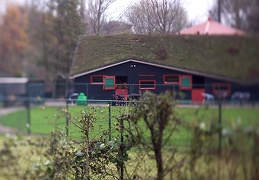 Nov 20 - Children's farm