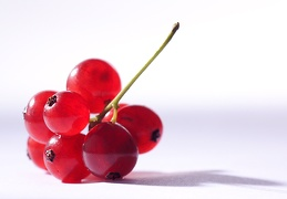 Aug 03 - Redcurrants II
