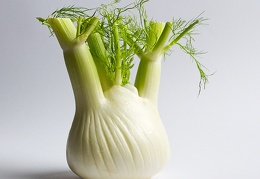 Oct 05 - Fennel