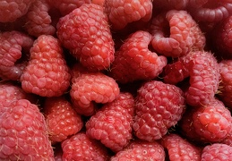 Aug 10 - Raspberries