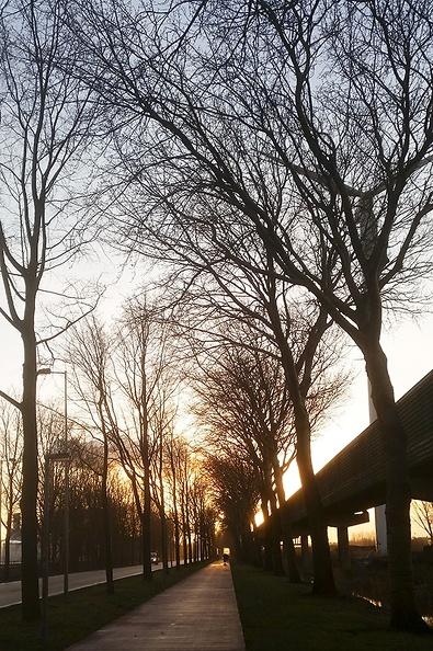 Sun on my way to work