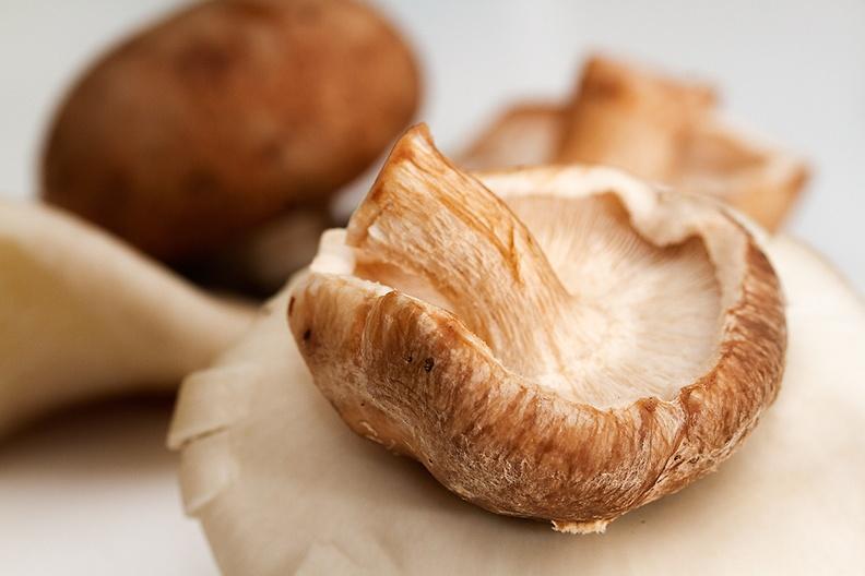 Mixture of mushrooms, ingredients for dinner today