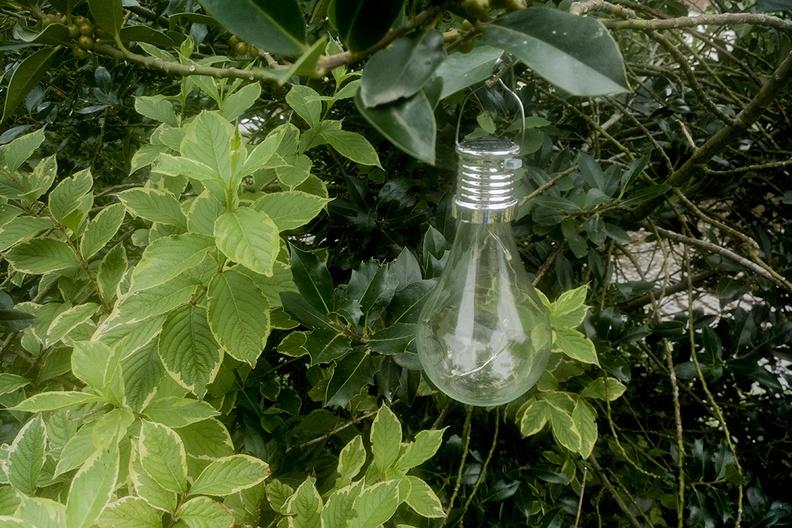 Solar powered gadget in my garden