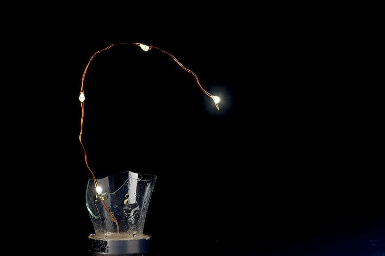 One of the (plastic) solor powered bulbs in my garden was broken. Too much wind.