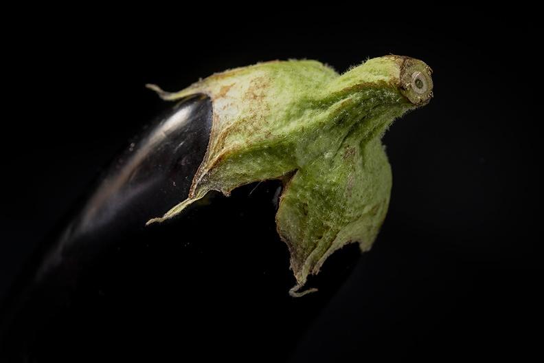 Portrait of an eggplant